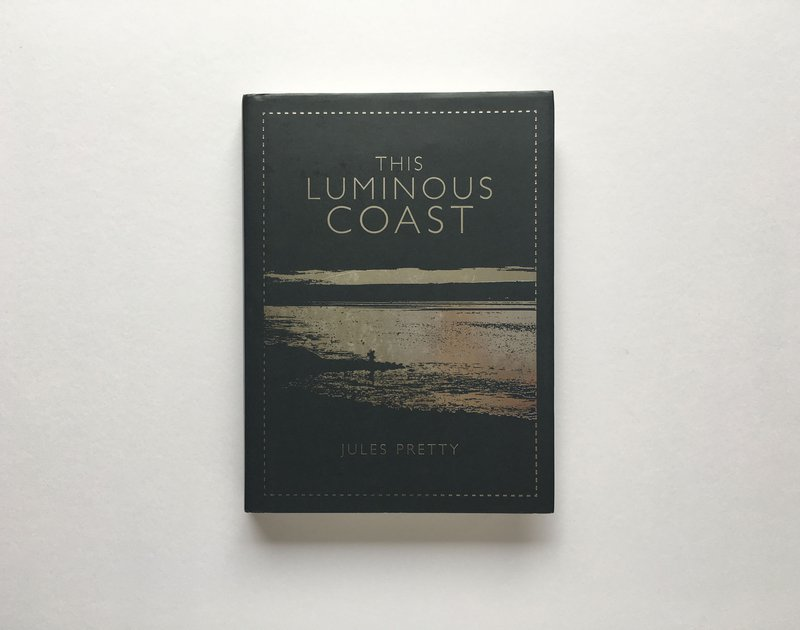 Luminous Coast 29.jpg